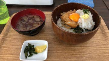 仁科イカサマ丼ランチライド